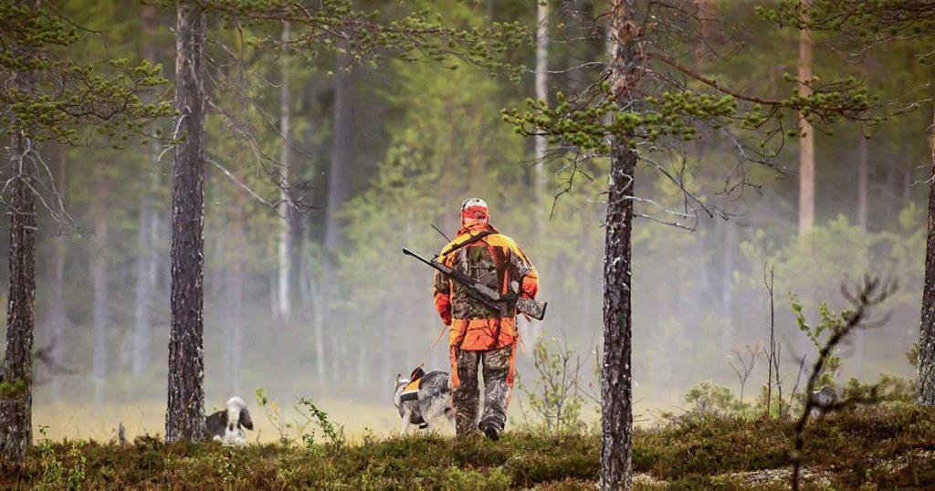 preparati per la stagione di caccia - Armeria Olimpic Sport Srl